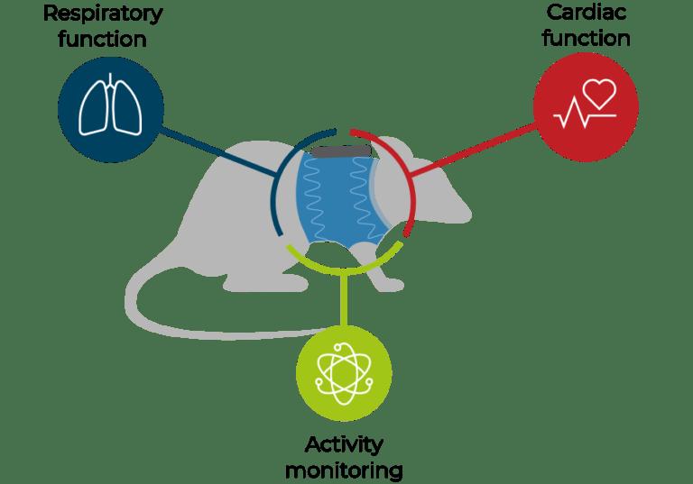 illustration describing biosignals acquired by DECRO solution
